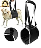 CatYou Dog Lift Support Rehabilitation Harness with Reflective tape, for Aid Tired Injured Weak Joints or Elderly Dogs, Black (M)