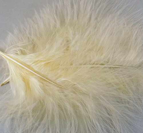 12-large-cream-fluffy-marabou-feathers-3-to-5-inch-by-gc
