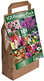 GreenBrokers 01 Promo Pack Collection-Different Summer Flowering Varieties (101 Bulbs), Mixed Colours