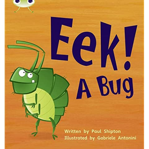 EEK! A Bug (Phonics Bug)