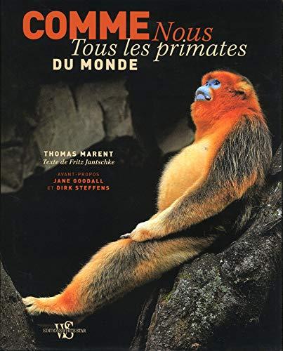 Comme nous - Tous les primates du monde par Anne de La roche