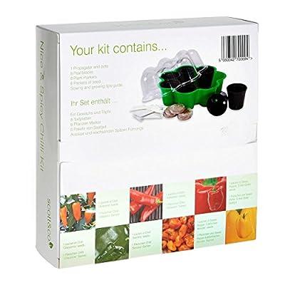 Scott & Co Chili-Pflanz-Set mit 6 Chilisorten zum Anpflanzen von Scott & Co bei Du und dein Garten