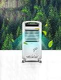 Ventilatoren Tragbare Klimaanlage Lüfter Heizung und Kühlung Dual-Purpose Kühlschrank Heizung Klimaanlage Tischventilator