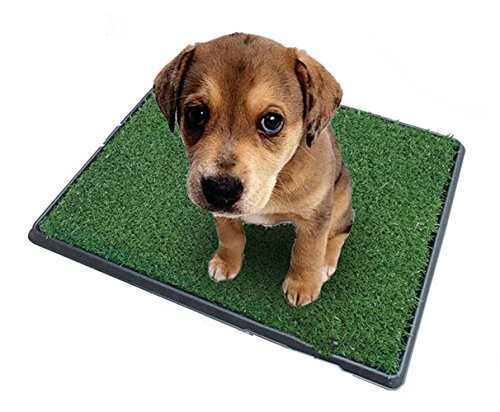 Topiaukstore XTELARY Puppy Toilet Dog Grass Restroom Potty Training with Tray and Loo Pad 1