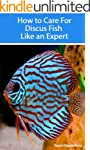 How to Care for Discus Fish Like an E...