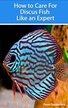 How to Care for Discus Fish Like an Expert (Aquarium and Turtle Mastery Book 3) (English Edition) par [Chipperfield, David ]