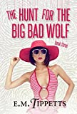The Hunt for the Big Bad Wolf (Someone Else's Fairytale Book 3)