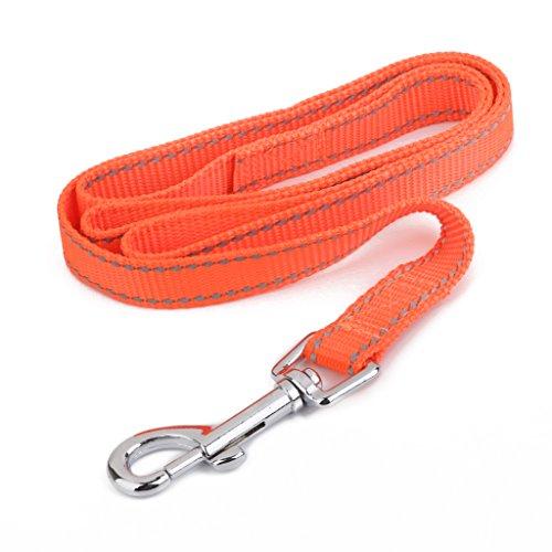 laisse-reflechissante-pour-chien-orange-m