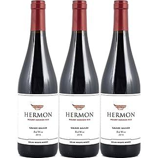 Golan-Heights-Winery-Yarden-Mount-Hermon-Cabernet-Sauvignon-Merlot-20152016-3-x-075-l