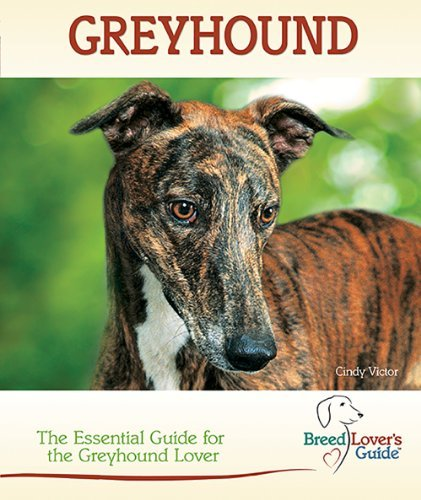 greyhound-the-essential-guide-for-the-greyhound-lover-breed-lovers-guide-by-cindy-victor-2012-02-16