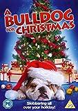 Bulldog For Christmas [DVD]