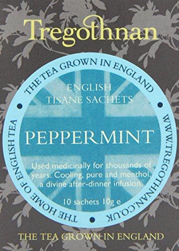 tregothnan-peppermint-tea-pack-of-1-total-10-sachets