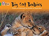 Big Cat Babies: Band 05/Green (Collins Big Cat)