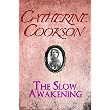 The Slow Awakening