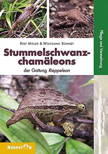 Stummelschwanzchamäleons: Die Gattung Rieppeleon