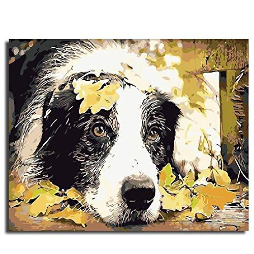 Painting-YC Mach Es Selbst Malen Nach Zahlen Kits Geschenk Für Erwachsene Kinder Home Haus Dekor Hund 16×20