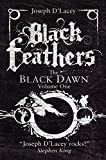 Black Feathers (The Black Dawn, Band 1) - Joseph D' Lacey