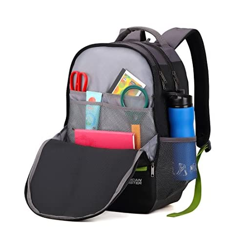 a97f731f24aa6d American Tourister 32 Ltrs Black Casual Backpack (AMT Fizz SCH Bag 02 –  Black)