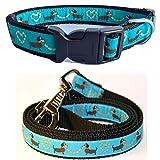 Halsband + Hundeleine set Dackel blau S Länge 25 - 38 cm Breit 2 cm / 100 cm x 2 cm