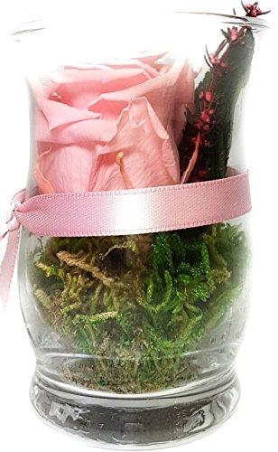 Rosen-te-amo Blumenstrauß im Vase aus eine ECHTE Rose - 3 JAHRE haltbare Blume OHNE WASSER – Geschenk zum Valentinstag die Konservierte Rose