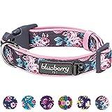 Best Blueberry Pet harnais pour les chiens - Blueberry Pet Collars 2,5cm, Grand modèle L, Motifs Review