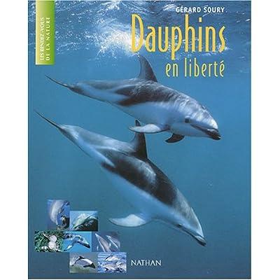 Dauphins en liberté