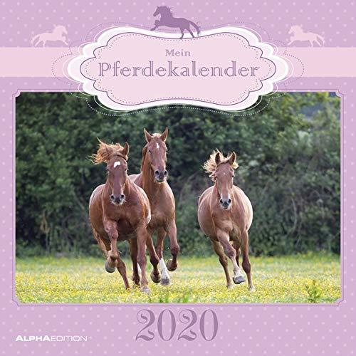 Mein Pferdekalender 2020 - Broschürenkalender (30 x 60 geöffnet) - Wandkalender - Tierkalender - Wandplaner