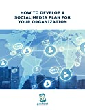 HOW TO DEVELOP A SOCIAL MEDIA PLAN FOR YOUR ORGANIZATION (English Edition)