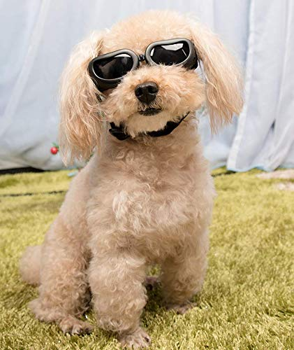 JINQD Hundesonnenbrille, Haustierbrille, Haustierhundebrille, Haustier-UV-Sonnenbrille, Winddichte Hundewelpensonnenbrille, Mode-Hundebrille für Hund/Haustier (Color : Black, Size : S)