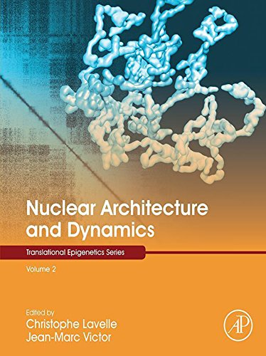 Nuclear Architecture And Dynamics (translational Epigenetics Book 2) por Christophe Lavelle