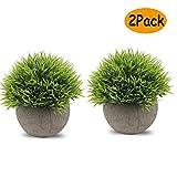 Künstliche Topfpflanzen Mini Kunststoff Fälschungs Pflanzen Faux Blumen mit Grau Töpfe für Home Decor ( 2er Set )