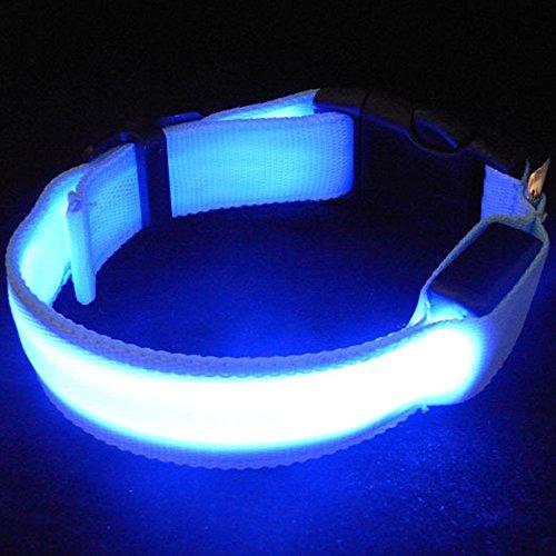 Sijueam Collier pour Chiens Chats Animaux Lumineux à LED rechargeable USB Taille Réglable pour Promenades Noctures 3 modes de clignotement - Bleu, Taille XS
