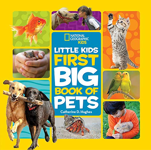 Little Kids First Big Book of Pets (English Edition)