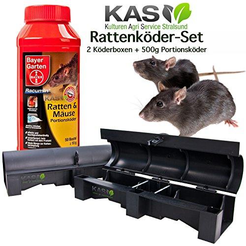 ratten bek mpfen so k nnen sie ratten vertreiben. Black Bedroom Furniture Sets. Home Design Ideas