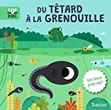 Telecharger Livres Du tetard a la grenouille Pop up (PDF,EPUB,MOBI) gratuits en Francaise