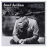 Asaf Avidan: The Study On Falling [CD]