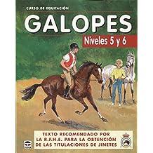 CURSO DE EQUITACIÓN. GALOPES NIVELES 5 Y 6 (Curso De Equitacion)