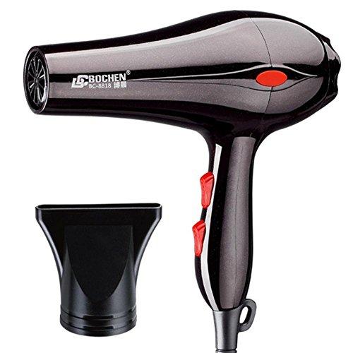 schnelles trockenes Haar-negativer Ionenschönheits-Salon-Heizungs-leistungsfähiger Schlag-Trockner (Hochleistungs-heizung)