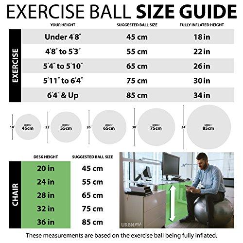Gymnastikball Übungsball (Mehrere Größen) für Fitness, Stabilität, Balance, Yoga, Schweizer, Schwangerschaft Ball - Übungsleitfaden Inbegriffen - Schnelle Pumpe Inklusive - Anti-Burst Professionelle Qualität - 45cm, Rosa - 4