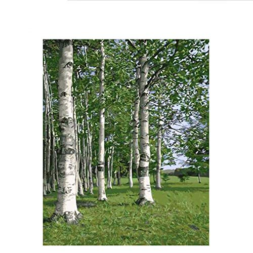Waofe Grünland Diy Malen Nach Zahlen Abstrakte Wald Ölgemälde Auf Leinwand Baum Bild Dekor Acryl Wohnkultur, 40X50 Cm, Ohne Rahmen