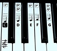 FineFun Piano key and Keyboard Music Note Stickers Learning Piano Label Decal (Black (Black)