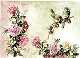 Reispapier A4 - Meisenpaar mit Rosen. Motiv-Strohseide, Strohseidenpapier, Decoupage Papier