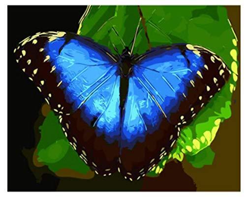 MBYWQ Digitale Malerei DIY Digital Ölfarbe Von Digital Kinder Geburtstag Hochzeit Einzigartiges Geschenk Blue Butterfly(Ohne Rahmen)
