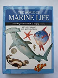 World of Marine Life: From Tropical Reef Fish to Mighty Sharks (Expert Guide)