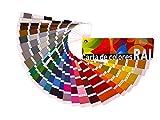 Rugoplast - Carta de colores RAL Estándar. Paleta de colores profesional