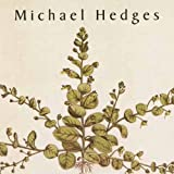 Songtexte von Michael Hedges - Taproot