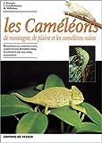 Les caméléons de montagne, de plaine et les caméléons nains