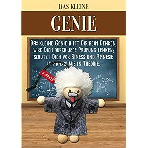 Püppkes Einstein Geschenkartikel, Holz, Bunt, 15 x 10.5 x 2.7 cm