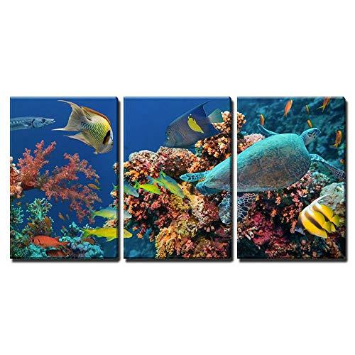 jjshily Wandkunst Poster Modulare Leinwanddrucke Fisch Bilder 3 Stücke Bunte Unterwasser Offshore Rocky Reef Coral Malerei Wohnkultur, 50X70
