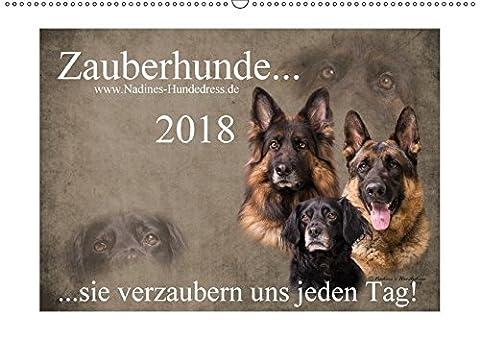 Zauberhunde... sie verzaubern uns jeden Tag! (Wandkalender 2018 DIN A2 quer): Zauberhunde... sie zaubern einem jeden Tag ein Lächeln ins Gesicht und ... [Kalender] [Apr 01, 2017] Hofer-Ott, Nadine